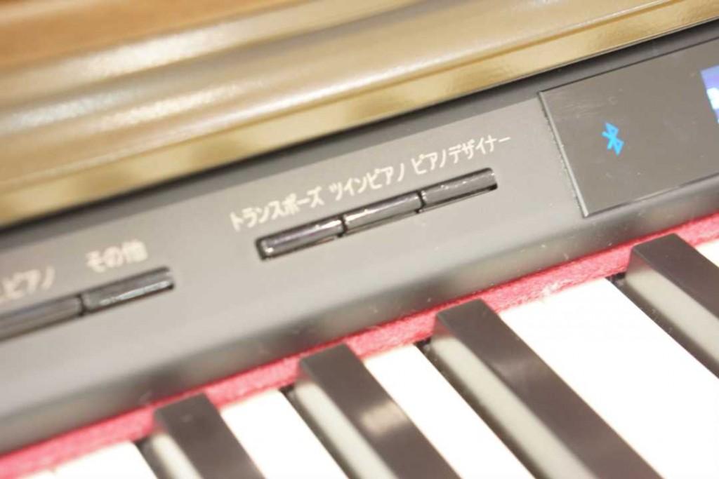 DSC04214